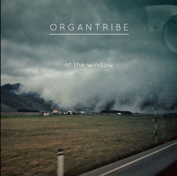 At the window, ORGAN TRIBE